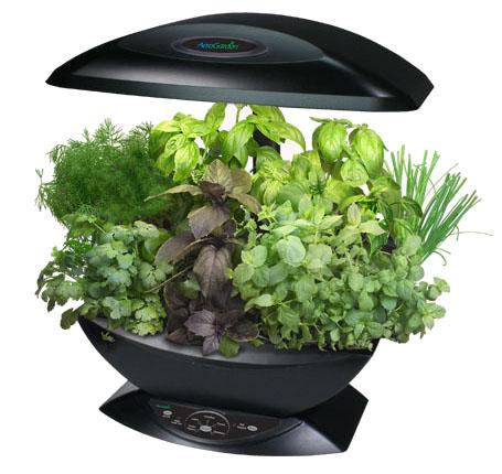 aerogarden - vegetais